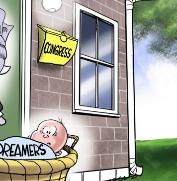 7 scathing cartoons about President Trump's DACA mess