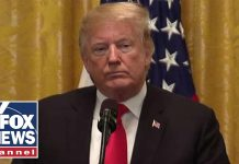 Trump: Journalists should be free of fear of attack