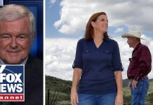 Gingrich: Primaries have set stage for red wave in November