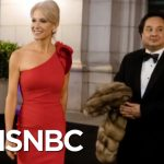 The Bizarre World Of Kellyanne Conway & George Conway | Deadline | MSNBC