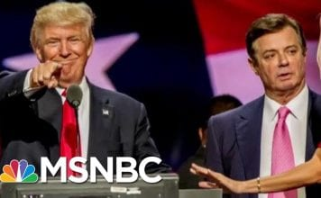 Report: Manafort Lawyer Told Donald Trump Lawyers About Mueller Meetings | The Last Word | MSNBC
