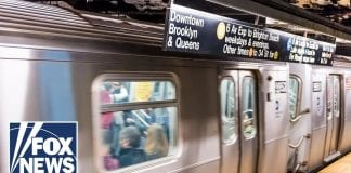 History behind New York City's subway colors explained