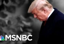 Democrat: It's Time To Get The Facts About Trump Before The American People | The 11th Hour | MSNBC