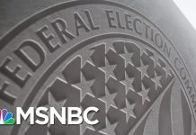 FEC Loses Its Power After Vice Chair Resigns | MTP Daily | MSNBC
