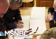 DNC Will Recommend Nixing Iowa's 'Virtual Caucus' Plans Over Hacking Fears | Hallie Jackson | MSNBC