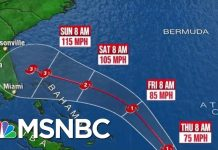 Tropical Storm Dorian Strengthened To A Hurricane | Katy Tur | MSNBC
